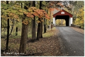 Autumn Colors Along Cabin Run Covered Bridge - Plumstead, PA
