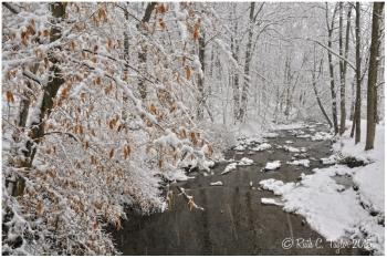 Spring Snow Along Paunacussing Creek - Carversville, PA