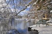 Lake Afton Bench