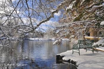 Bench At Lake Afton - Yardley, PA