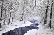 Winter  Paunnacussing Creek - Caraversville, PA