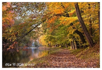 Autumn Light Along the Delaware Canal - Delaware Canal, PA