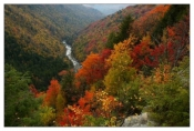 Lindy Point Overlook - Blackwater Falls, WV
