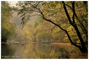 Misty Morning Along the Tohickon - Pipersville, PA