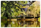Spring Morning at Afton Pond - Yardley, PA