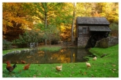 Autumn at Bromley Mill - Cuttalossa Farm, PA