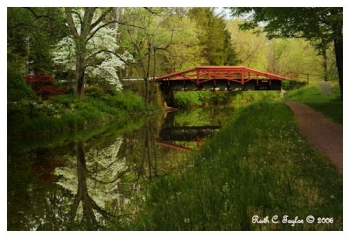 Spring Morning Along the Canal - Delaware Canal, PA