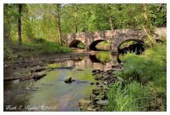 Spring Morning Along Fleecydale - Carversville, PA