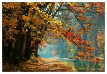 Misty Autumn Morning - Delaware Canal, PA
