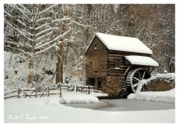 Winter's Day at Cuttalossa Mill - Holiday Card