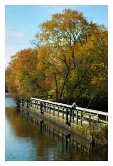 Autumn Afternoon Fishing - Delaware & Raritan Canal, NJ