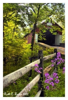Misty Summer Morning at Frankenfield Covered Bridge - Tinicum, PA