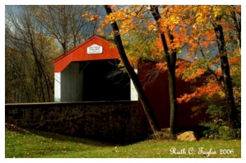 After the Storm at Pine Valley Covered Bridge - New Britain, PA