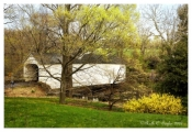 Spring Along Loux Covered Bridge - Plumstead, PA