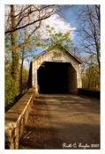 Spring Along Sheard's Mill Covered Bridge - Quakertown, PA