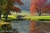 Autumn Morning Hues - Lahaska, PA