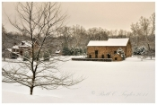 Winters Calm at Burgess Lea Farm - Solebury, PA