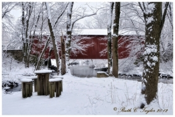 Winter Along Pine Run Creek Covered Bridge - Holiday Card
