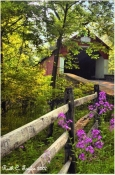 Summer Mist Frankenfield Covered Bridge - Note Card