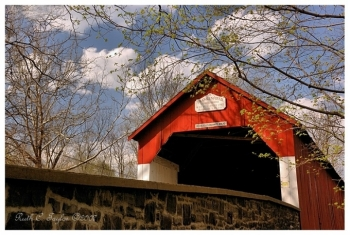 Spring at Frankenfield Covered Bridge - Note Card